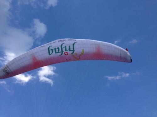 AeroTEST-Beschriftung-Frifag-IMG_1099